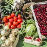 Краевая выставка-ярмарка кубанских народных промыслов,  ремесел и сельского (аграрного) туризма